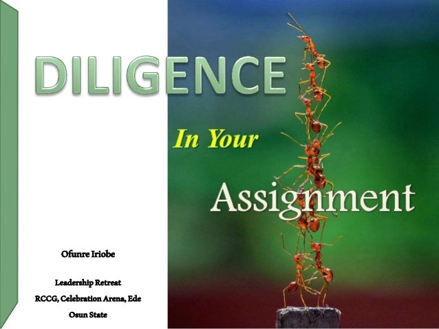 Diligence in your assignment