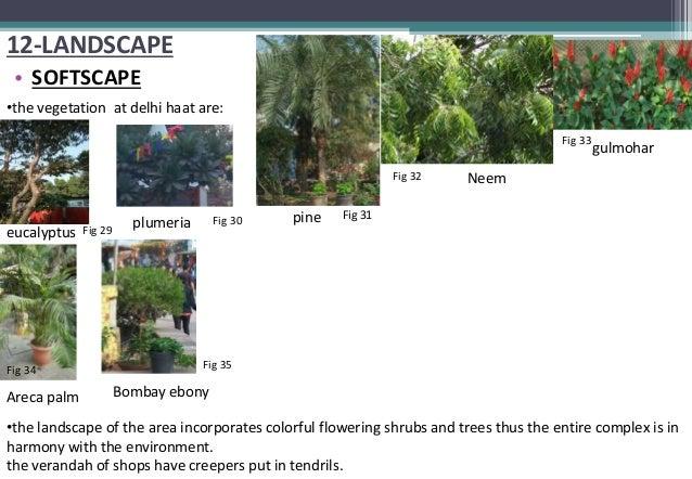 DILLI HAAT Case Study - PDF Free Download