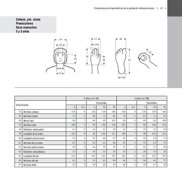 Dimensiones antropom tricas latino americanas for Arquitectura ergonomica