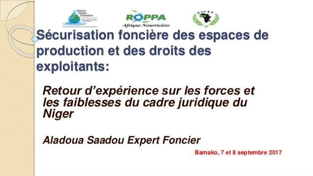 Sécurisation foncière des espaces de production et des droits des exploitants: Retour d'expérience sur les forces et les f...
