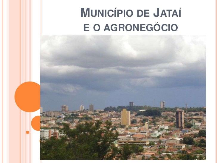 MUNICÍPIO DE JATAÍE O AGRONEGÓCIO