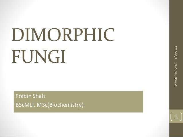 DIMORPHIC FUNGI Prabin Shah BScMLT, MSc(Biochemistry) 6/20/2015DIMORPHICFUNGI 1