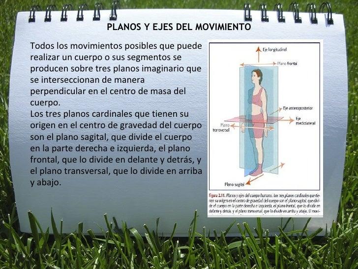 PLANOS Y EJES DEL MOVIMIENTO <ul><li>Todos los movimientos posibles que puede realizar un cuerpo o sus segmentos se produc...