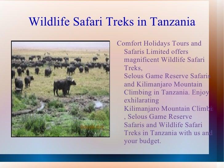 Safari in Tanzania Slide 2