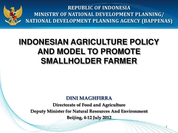 REPUBLIC OF INDONESIA    MINISTRY OF NATIONAL DEVELOPMENT PLANNING/ NATIONAL DEVELOPMENT PLANNING AGENCY (BAPPENAS)INDONES...