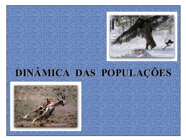 DINÂMICA DAS POPULAÇÕESDINÂMICA DAS POPULAÇÕES