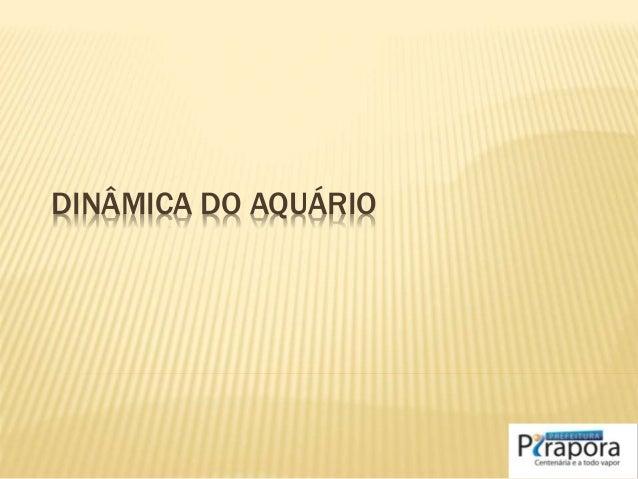 DINÂMICA DO AQUÁRIO