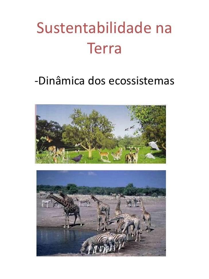 Sustentabilidade na       Terra-Dinâmica dos ecossistemas