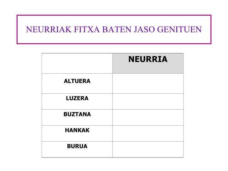 NEURRIAK FITXA BATEN JASO GENITUEN  NEURRIA ALTUERA  LUZERA  BUZTANA  HANKAK  BURUA