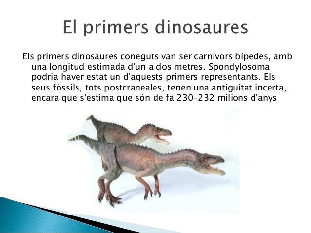 Els primers dinosaures coneguts van ser carnívors bípedes, amb una longitud estimada d'un a dos metres. Spondylosoma podri...