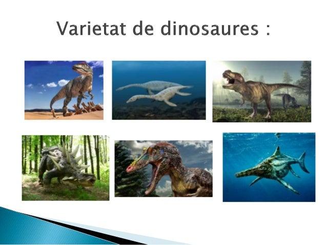 Els dinosaures en general solien ser de unes dimensions gegantesques però també n'hi havia que eren molt petits. De dinosa...
