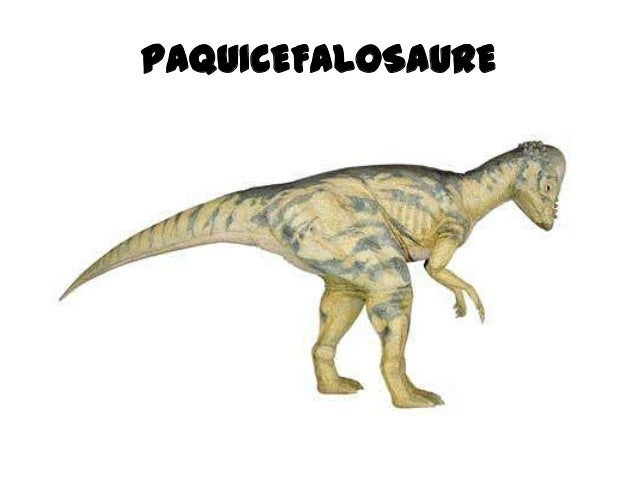 Dinosaures 2 Slide 2