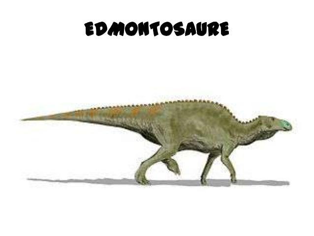 Dinosaures 2 Slide 3