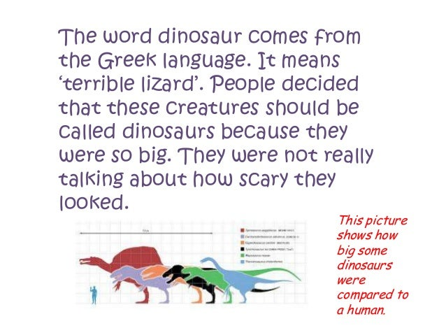 Dinosaur facts power point