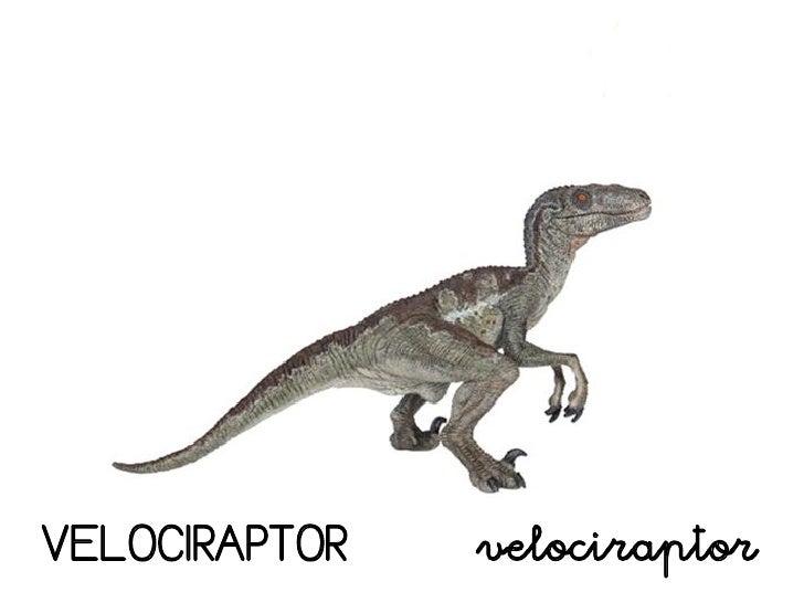 Dinosaurios Estos dinosaurios voladores tenían un diseño corporal justo para volar, su cuerpo era pequeño, con. dinosaurios