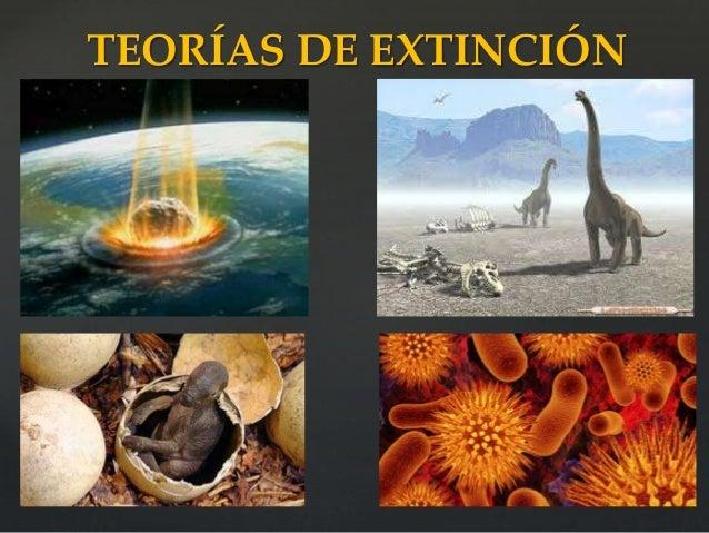 Los Dinosaurios La Biblia Y El Espiritu De Profecia See more of dinosaurios la serie on facebook. los dinosaurios la biblia y el