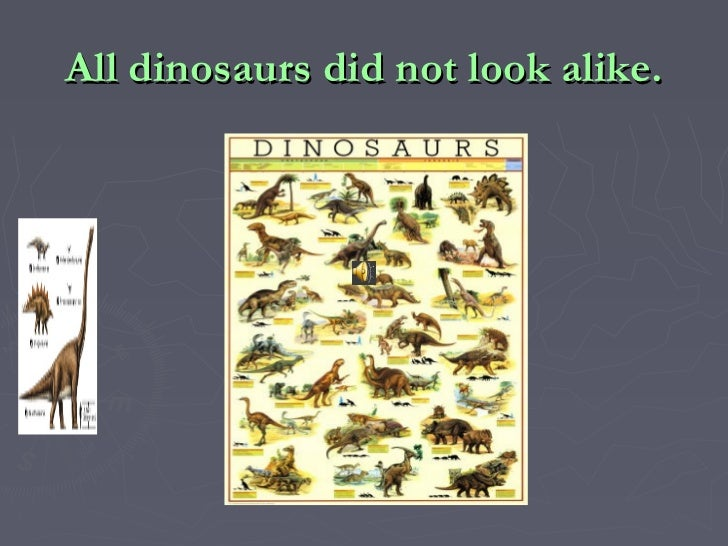 All dinosaurs did not look alike.