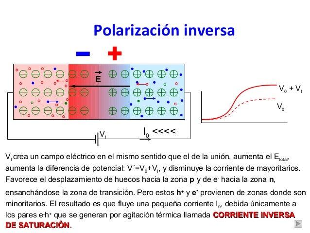 b0a0270e8 Polarización inversa ...