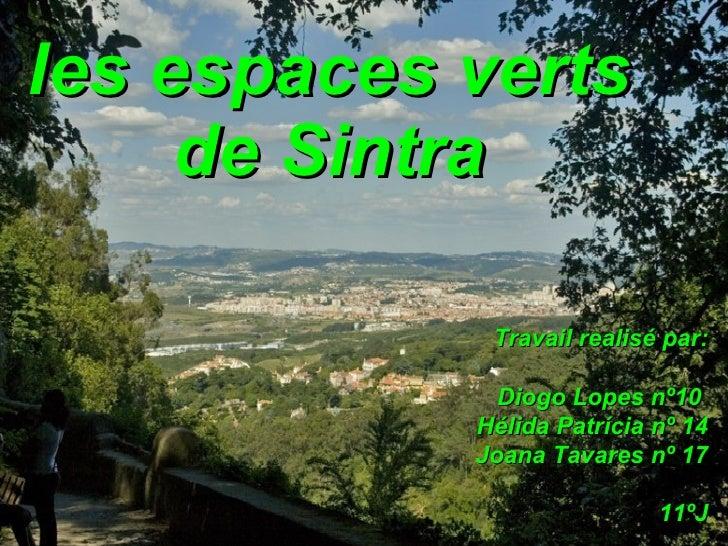 les espaces verts de Sintra Travail realisé par: Diogo Lopes nº10  Hélida Patrícia nº 14 Joana Tavares nº 17 11ºJ