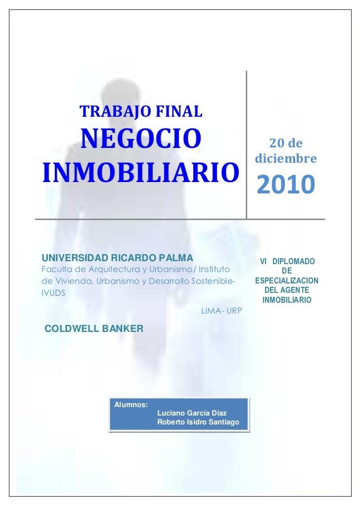 TRABAJO FINAL  NEGOCIO      20 de             diciembreINMOBILIARIO 2010UNIVERSIDAD RICARDO PALMA                         ...