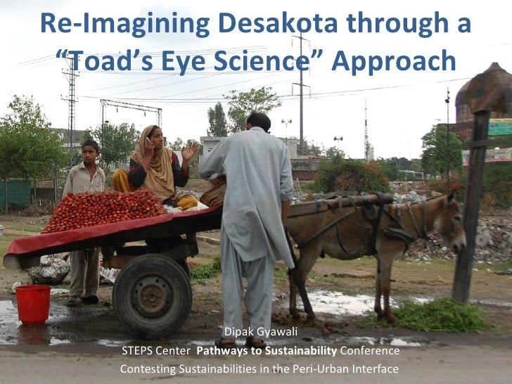"Re-Imagining Desakota through a ""Toad's Eye Science"" Appr oach Dipak Gyawali STEPS Center  Pathways to Sustainability  Con..."