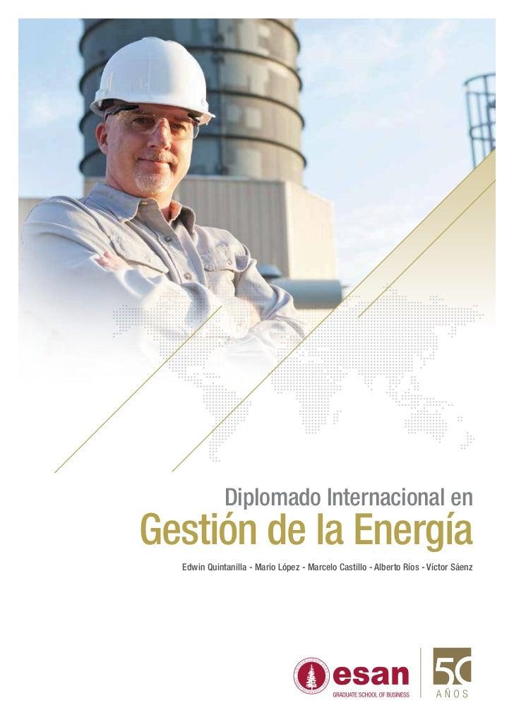 Diplomado Internacional enGestión de la Energía  Edwin Quintanilla - Mario López - Marcelo Castillo - Alberto Ríos - Vícto...