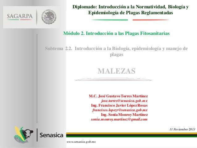 Diplomado: Introducción a la Normatividad, Biología y Epidemiología de Plagas Reglamentadas  Módulo 2. Introducción a las ...