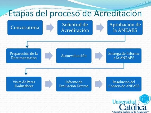 Etapas del proceso de Acreditación Convocatoria Solicitud de Acreditación Aprobación de la ANEAES Preparación de la Docume...