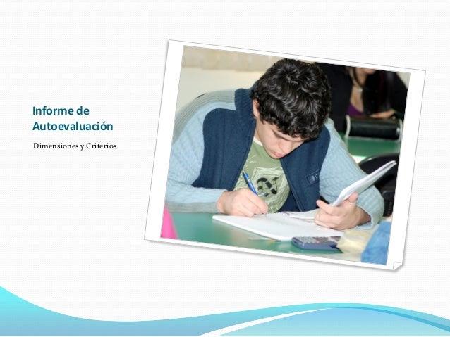 Informe de Autoevaluación Dimensiones y Criterios