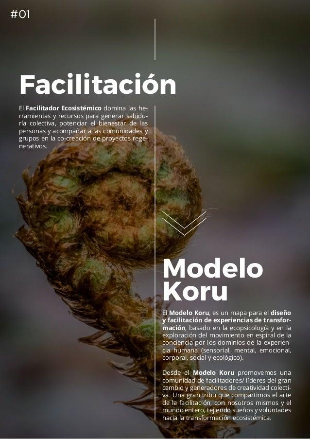 DIFE 2019: Diplomado Internacional de Facilitación Ecosistémica (Chile, España y Colombia). Slide 2
