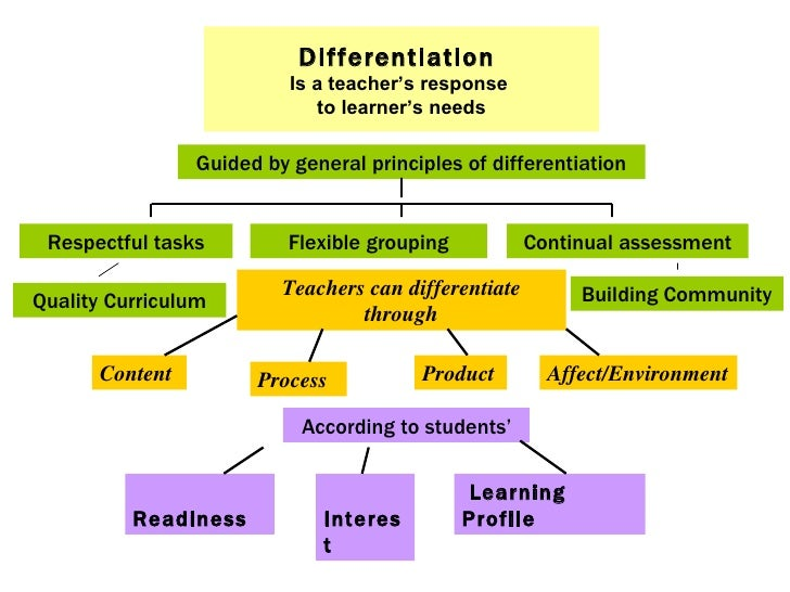Differentiated Learning Selol Ink