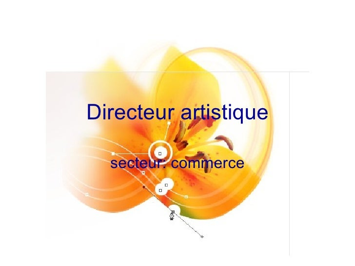 Directeur artistique secteur: commerce
