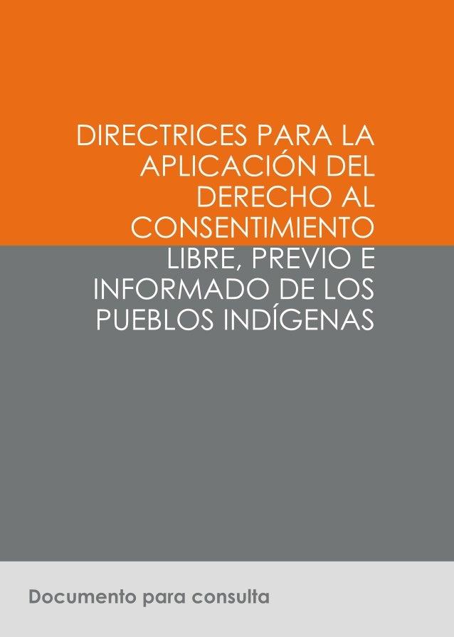 71. Introducción1.1 Objetivo de las DirectricesLas Directrices tienen como objetivo fundamental promover el pleno ejercici...