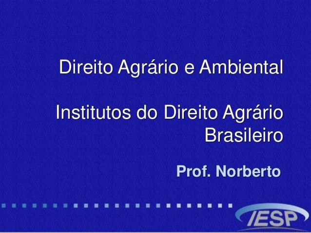 Direito Agrário e Ambiental Institutos do Direito Agrário Brasileiro Prof. Norberto