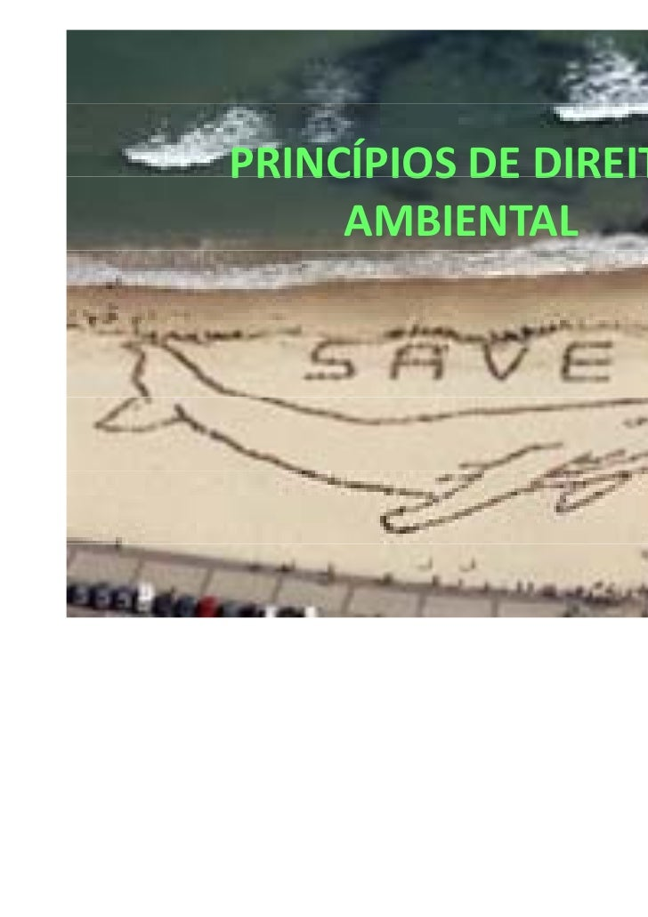 PRINCÍPIOSDEDIREITOPRINCÍPIOS DE DIREITO     AMBIENTAL
