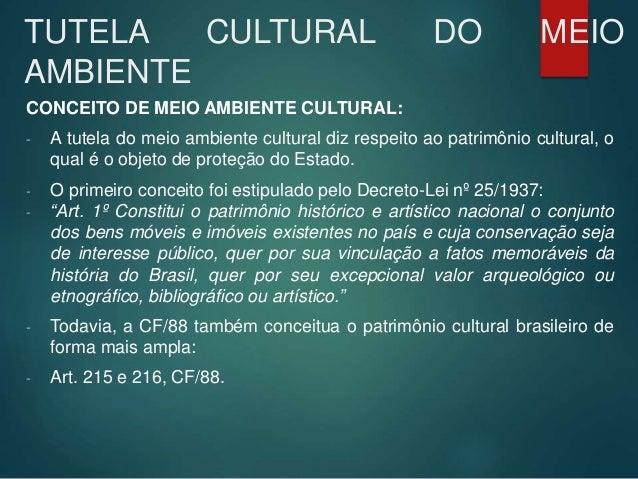 TUTELA CULTURAL DO MEIO AMBIENTE CONCEITO DE MEIO AMBIENTE CULTURAL: - A tutela do meio ambiente cultural diz respeito ao ...