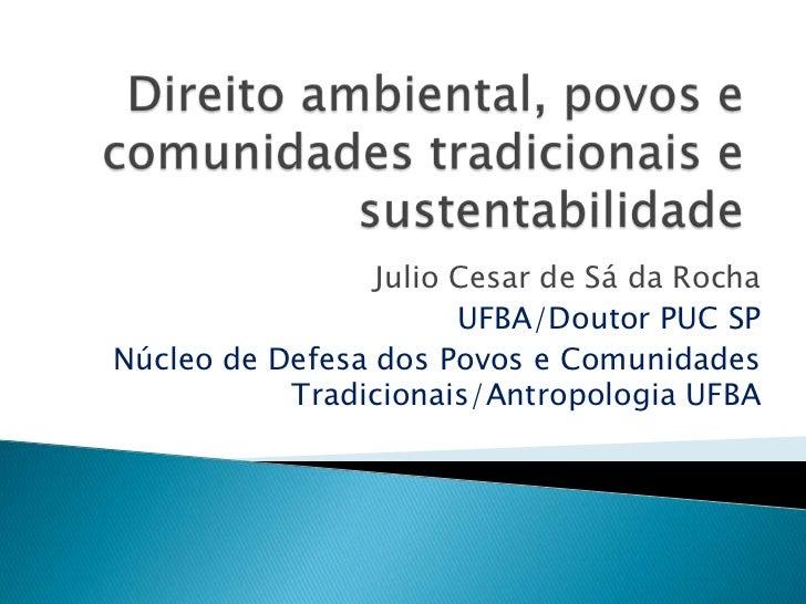 Julio Cesar de Sá da Rocha                       UFBA/Doutor PUC SPNúcleo de Defesa dos Povos e Comunidades           Trad...