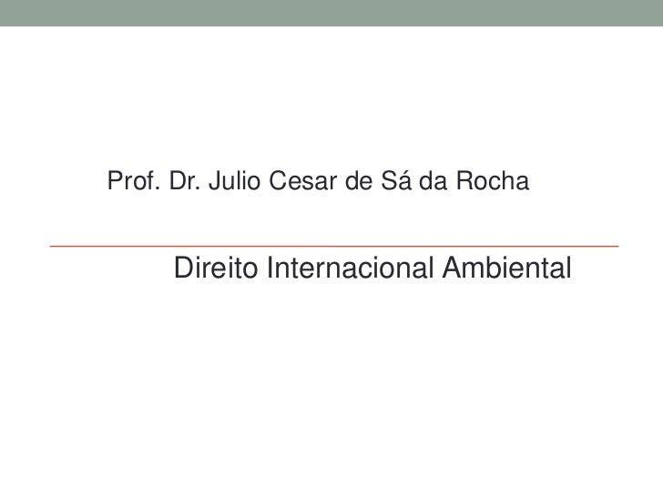Prof. Dr. Julio Cesar de Sá da Rocha<br />DireitoInternacionalAmbiental<br />