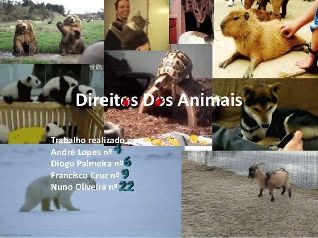 Direitos Dos Animais  Trabalho realizado por:  André Lopes nº  Diogo Palmeira nº  Francisco Cruz nº  Nuno Oliveira nº