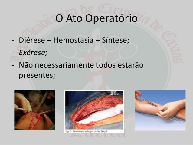 Diérese, hemostasia e síntese Slide 2