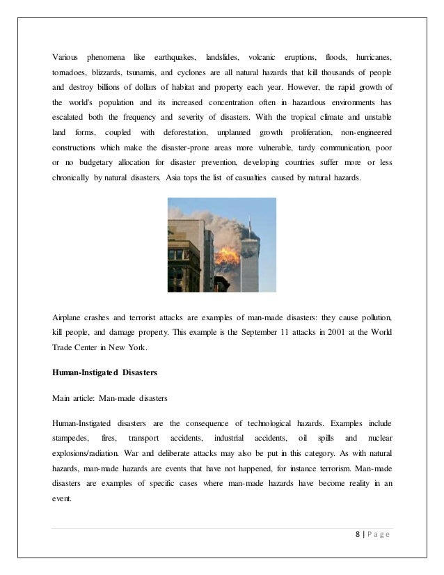 Disaster case analysis essay