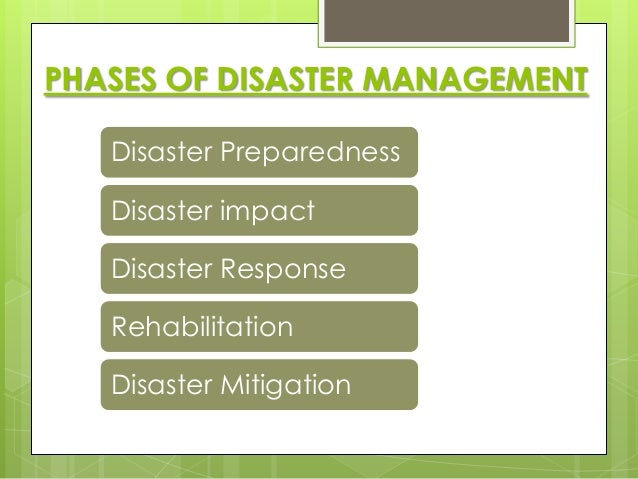 disaster preparedness and management pdf