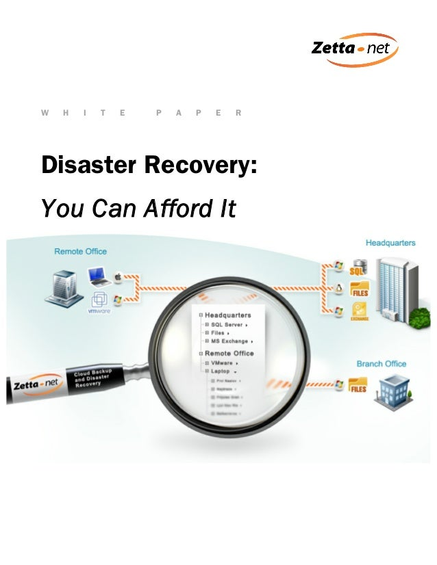W  H  I  T  E  P  A  P  E  R  Disaster Recovery: You Can Afford It