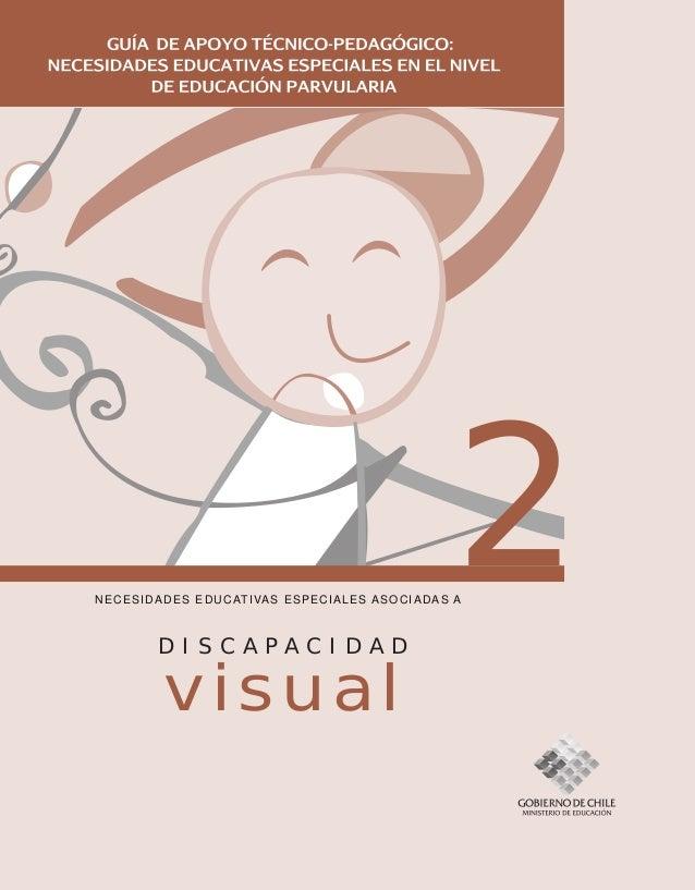 2NECESIDADES EDUCATIVAS ESPECIALES ASOCIADAS A D I S C A P A C I D A D visual