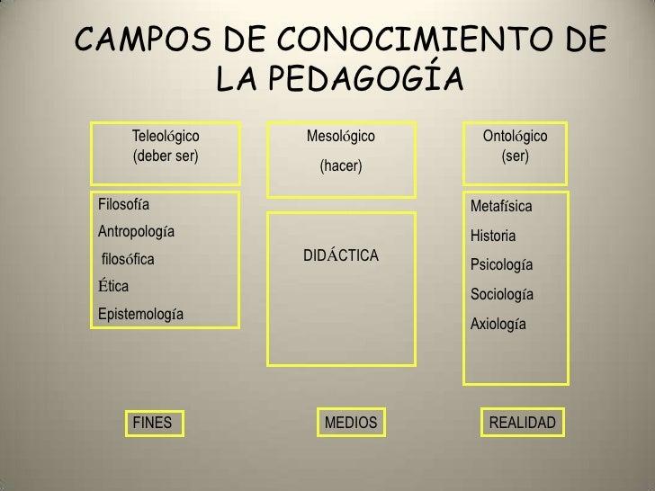 Disciplinas de pedagogia