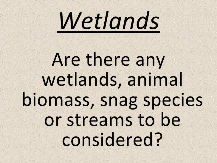 Wetlands <ul><li>Are there any wetlands, animal biomass, snag species or streams to be considered? </li></ul>