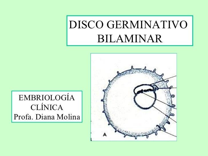 DISCO GERMINATIVO  BILAMINAR EMBRIOLOGÍA CLÍNICA Profa. Diana Molina