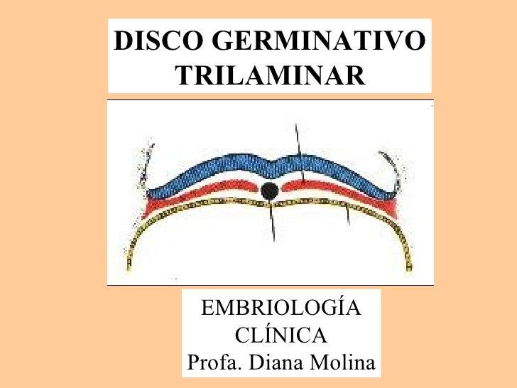 DISCO GERMINATIVO TRILAMINAR EMBRIOLOGÍA CLÍNICA Profa. Diana Molina