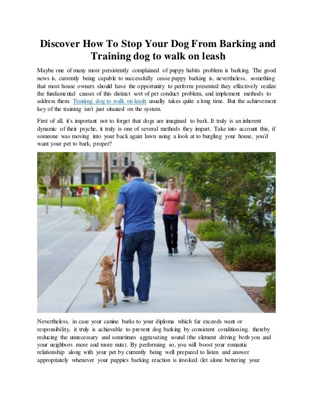 Discover How To Stop Your Dog From Barking and Training dog to walk on leash Maybe one of many most persistently complaine...
