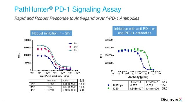 Cell-based Assays for Immunotherapy Drug Development